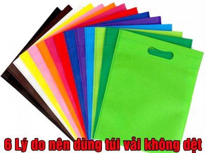 Lý do bạn nên chọn túi vải không dệt thay cho túi nilon
